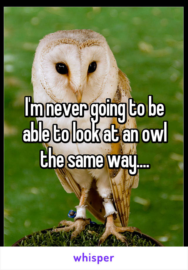 I'm never going to be able to look at an owl the same way....