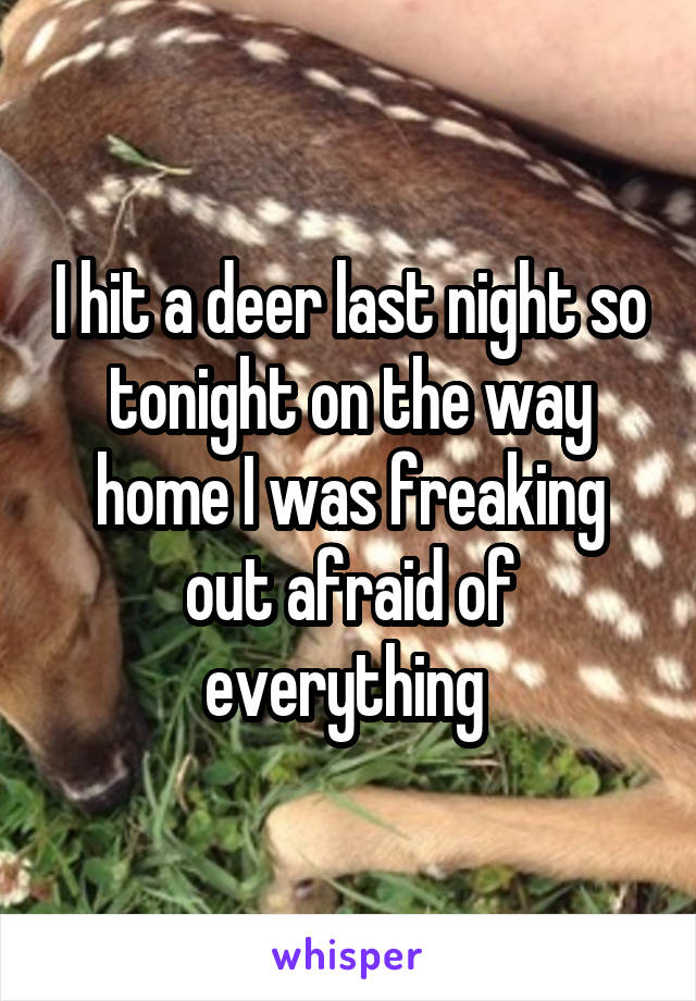I hit a deer last night so tonight on the way home I was freaking out afraid of everything