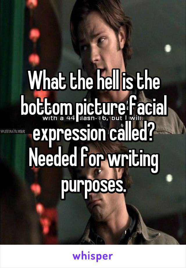 What the hell is the bottom picture facial expression called? Needed for writing purposes.