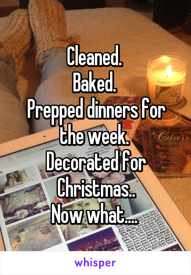 Cleaned.  Baked.  Prepped dinners for the week.  Decorated for Christmas.. Now what....