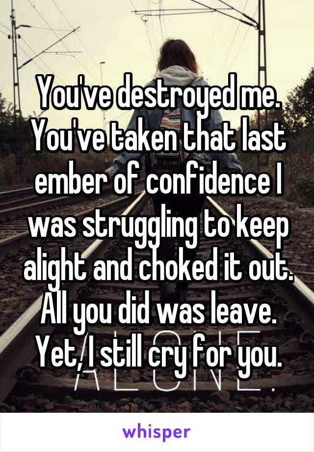 You've destroyed me. You've taken that last ember of confidence I was struggling to keep alight and choked it out. All you did was leave. Yet, I still cry for you.