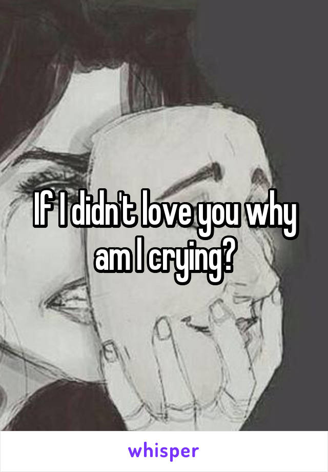 If I didn't love you why am I crying?