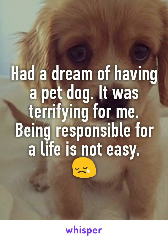 Had a dream of having a pet dog. It was terrifying for me. Being responsible for a life is not easy. 😢