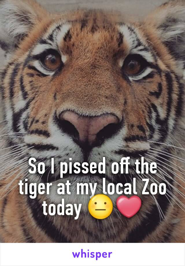 So I pissed off the tiger at my local Zoo today 😐❤