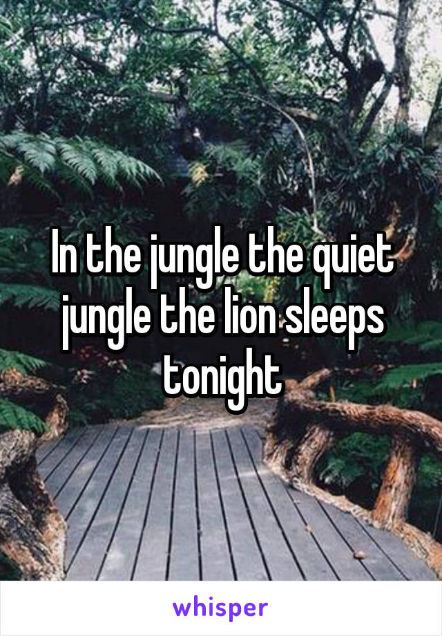 In the jungle the quiet jungle the lion sleeps tonight