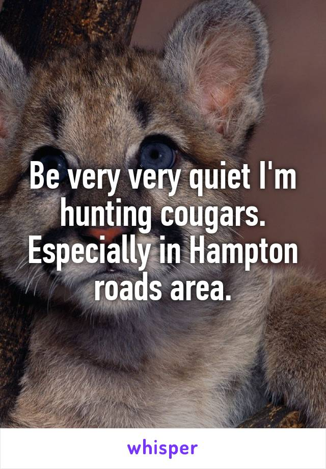 Be very very quiet I'm hunting cougars. Especially in Hampton roads area.
