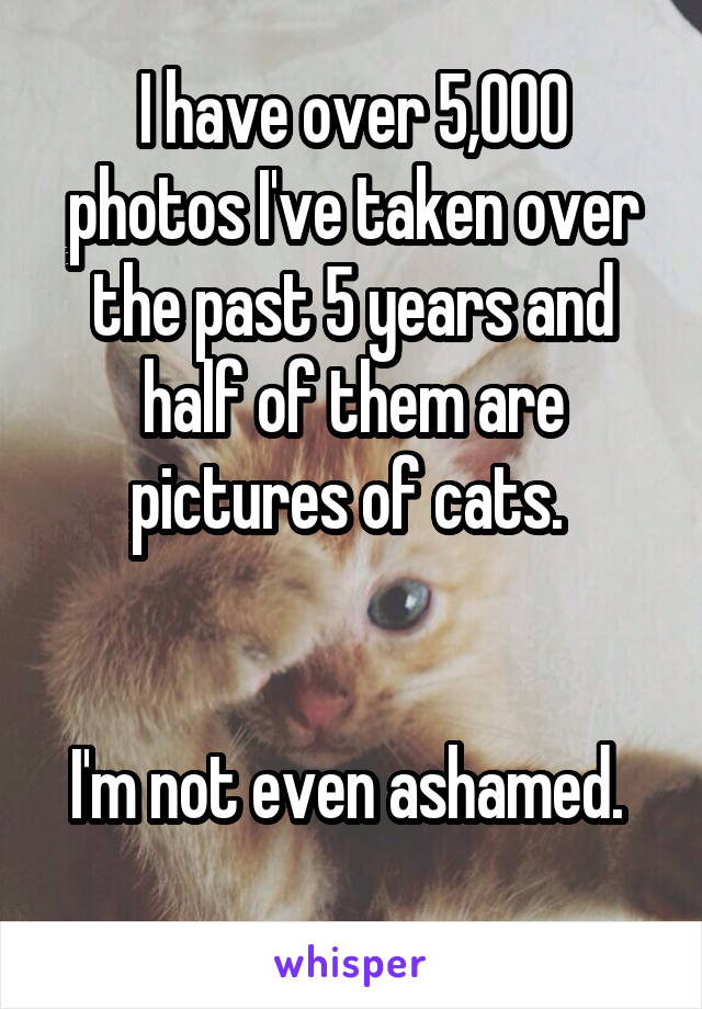 I have over 5,000 photos I've taken over the past 5 years and half of them are pictures of cats.    I'm not even ashamed.