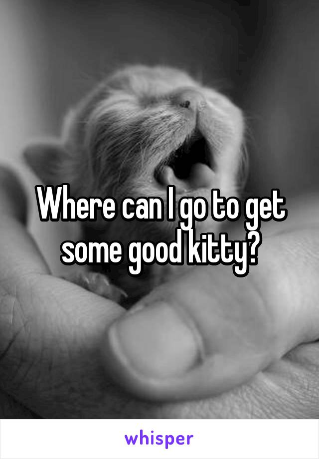 Where can I go to get some good kitty?