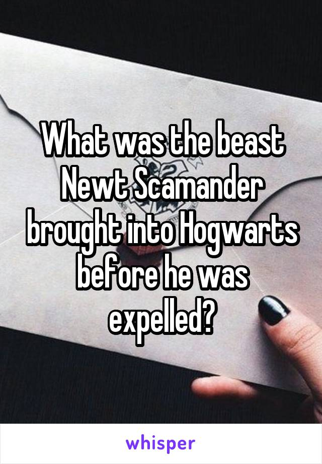 What was the beast Newt Scamander brought into Hogwarts before he was expelled?