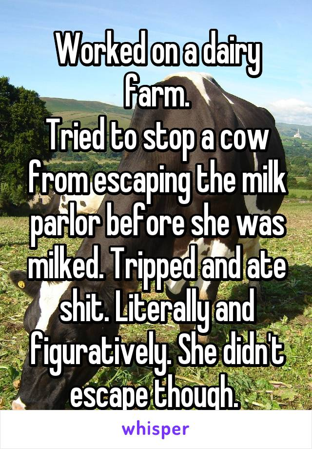 Worked on a dairy farm. Tried to stop a cow from escaping the milk parlor before she was milked. Tripped and ate shit. Literally and figuratively. She didn't escape though.