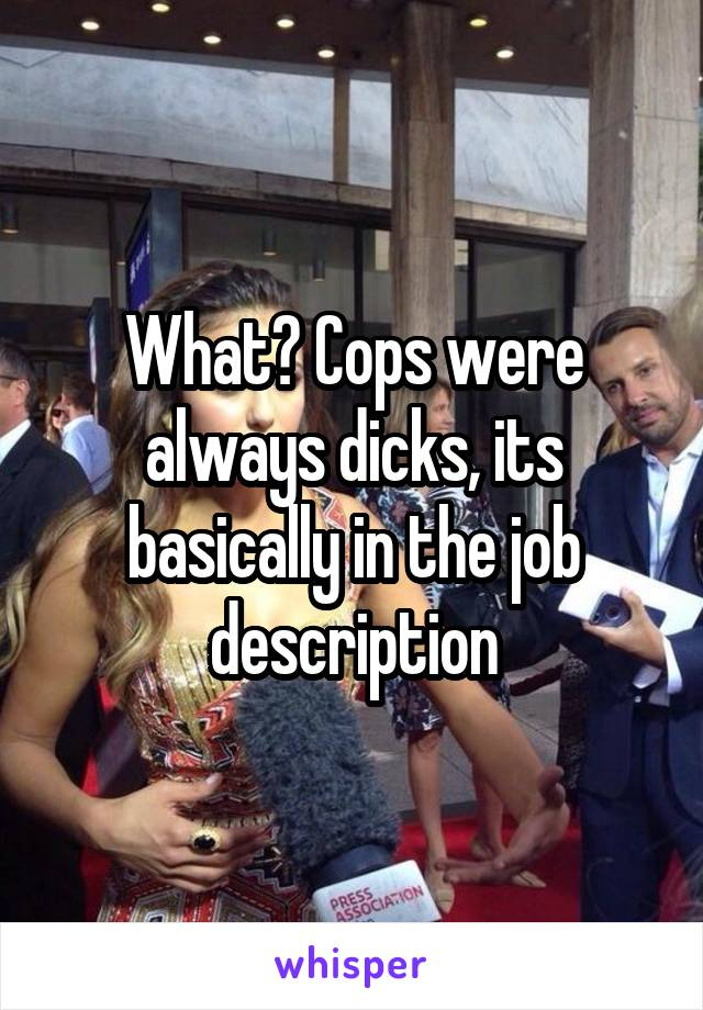What? Cops were always dicks, its basically in the job description
