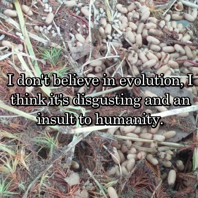 I don't believe in evolution, I think it's disgusting and an insult to humanity.