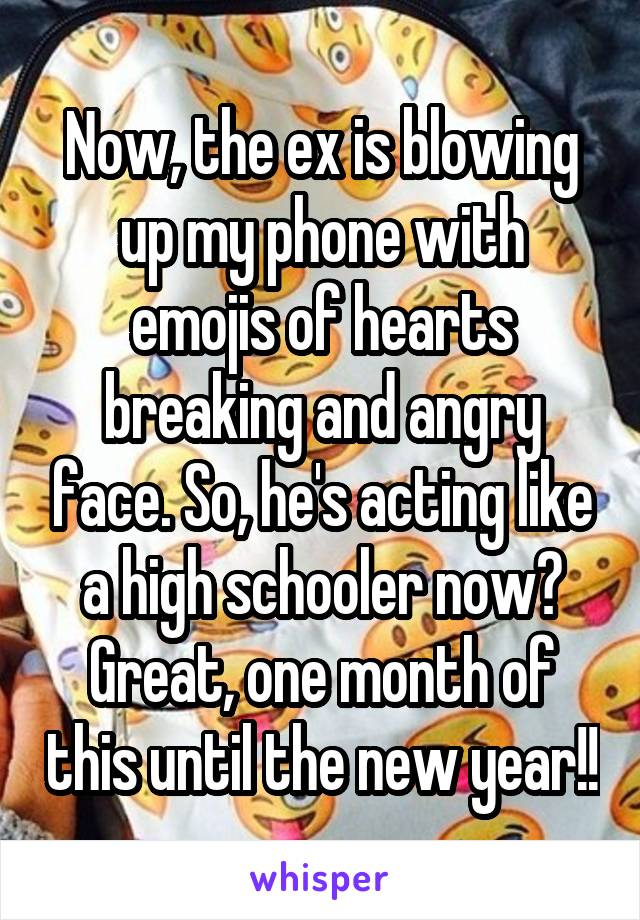 Now, the ex is blowing up my phone with emojis of hearts breaking and angry face. So, he's acting like a high schooler now? Great, one month of this until the new year!!