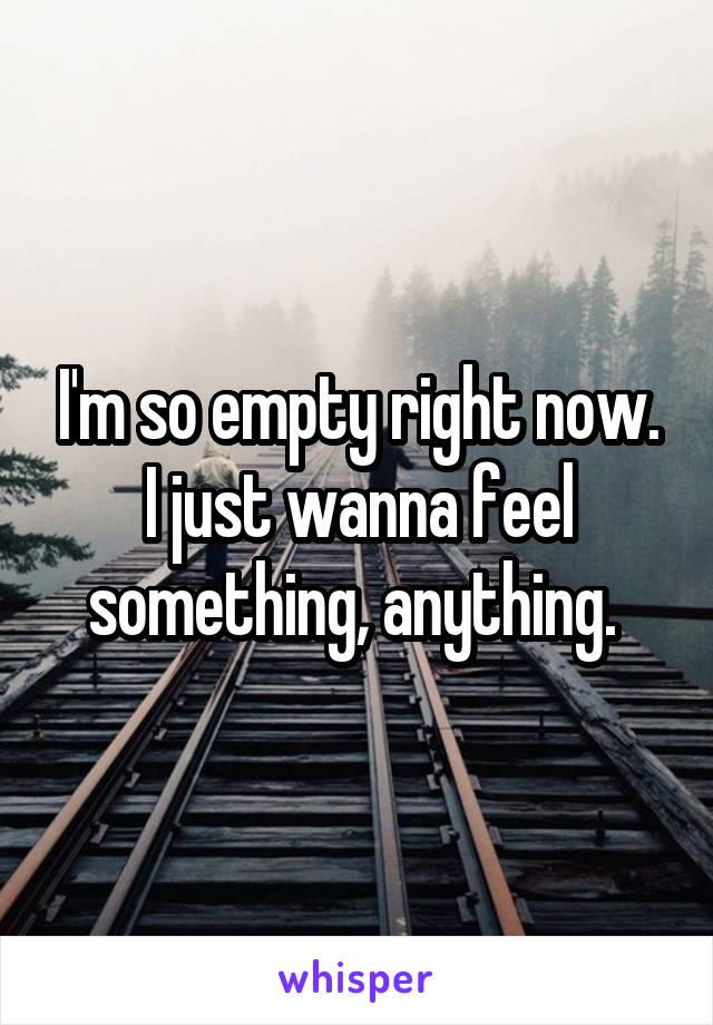 I'm so empty right now. I just wanna feel something, anything.