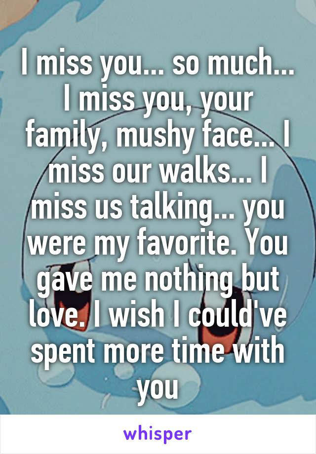 I miss you... so much... I miss you, your family, mushy face... I miss our walks... I miss us talking... you were my favorite. You gave me nothing but love. I wish I could've spent more time with you