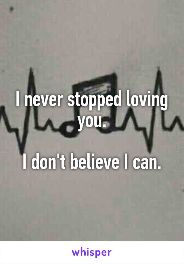 I never stopped loving you.  I don't believe I can.