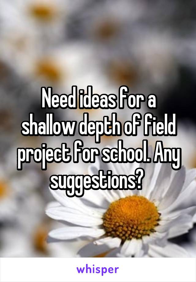 Need ideas for a shallow depth of field project for school. Any suggestions?
