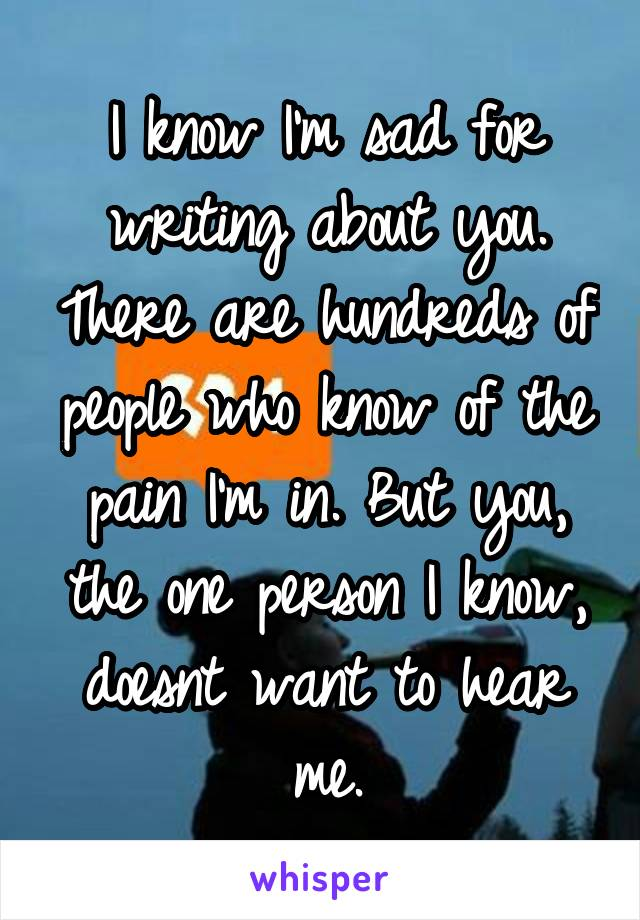 I know I'm sad for writing about you. There are hundreds of people who know of the pain I'm in. But you, the one person I know, doesnt want to hear me.