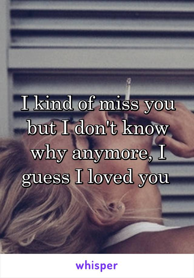 I kind of miss you but I don't know why anymore, I guess I loved you