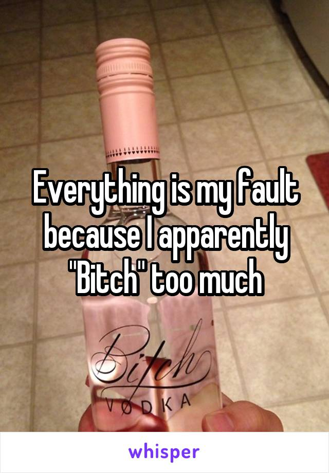 "Everything is my fault because I apparently ""Bitch"" too much"