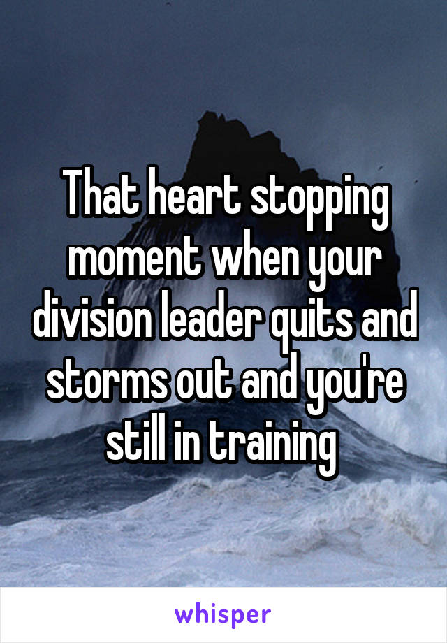 That heart stopping moment when your division leader quits and storms out and you're still in training
