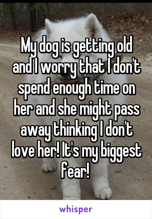 My dog is getting old and I worry that I don't spend enough time on her and she might pass away thinking I don't love her! It's my biggest fear!