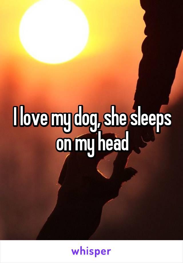 I love my dog, she sleeps on my head