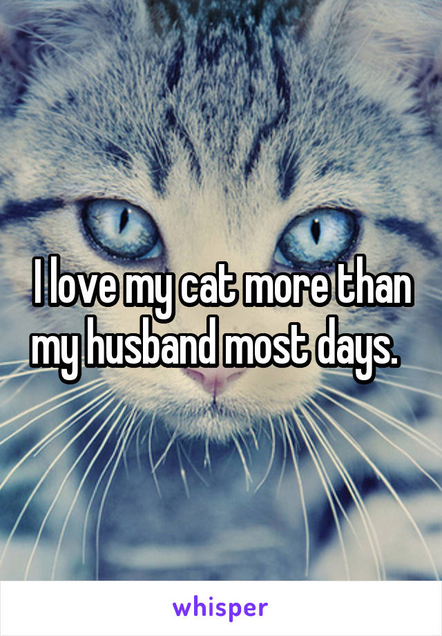 I love my cat more than my husband most days.