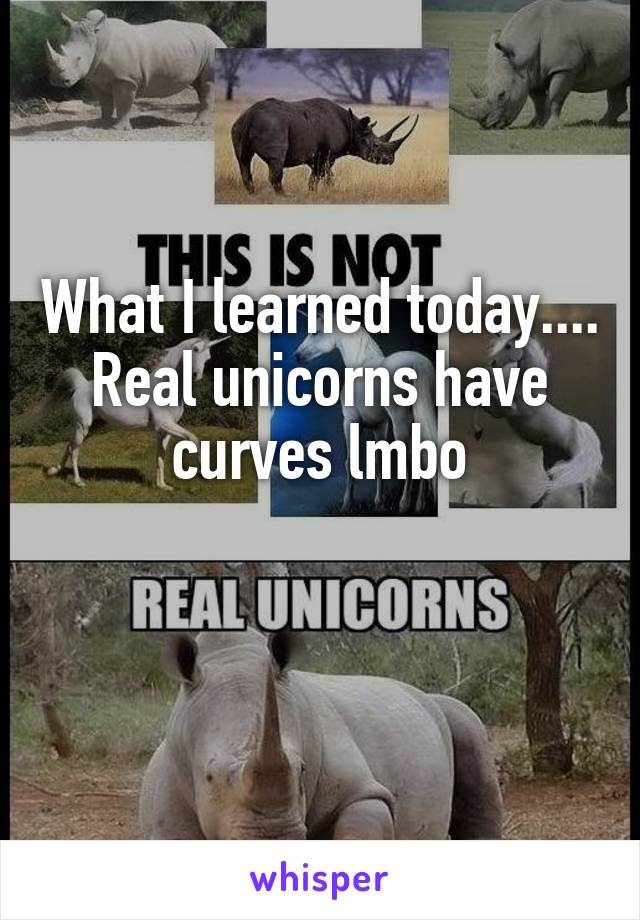 What I learned today.... Real unicorns have curves lmbo