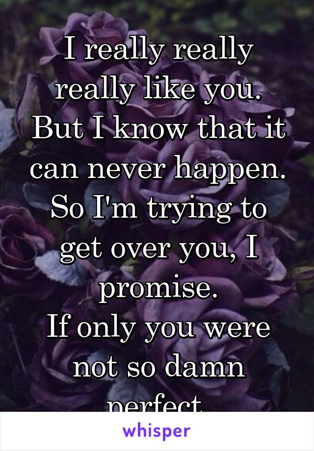 I really really really like you. But I know that it can never happen. So I'm trying to get over you, I promise. If only you were not so damn perfect.