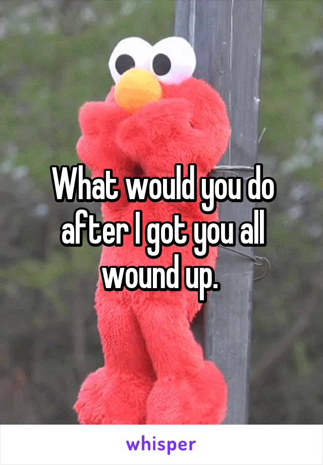 What would you do after I got you all wound up.