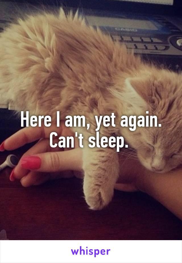 Here I am, yet again. Can't sleep.