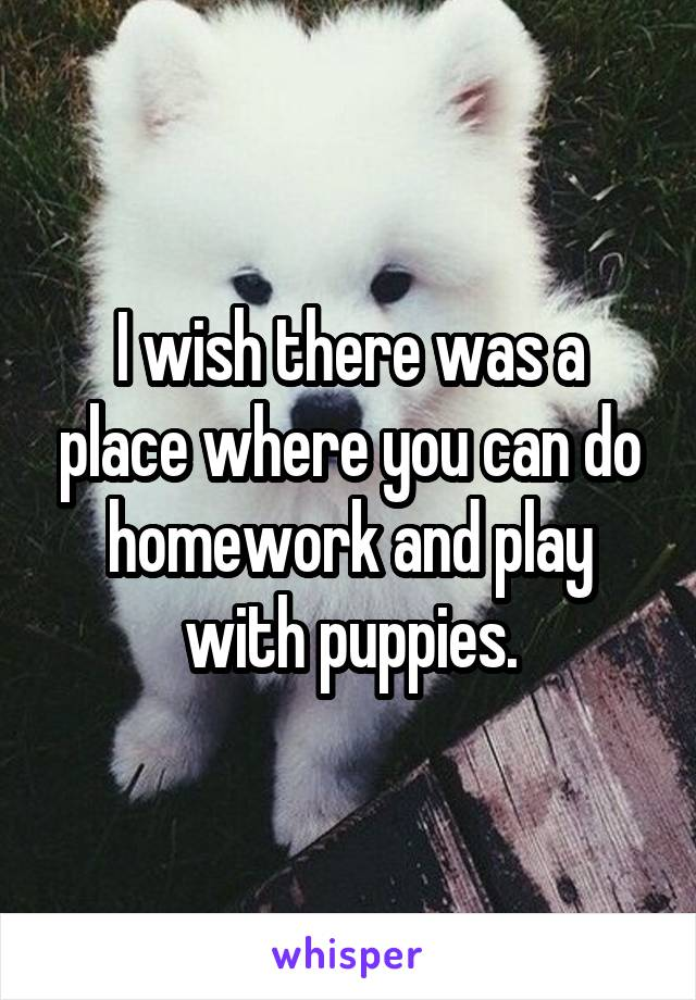 I wish there was a place where you can do homework and play with puppies.