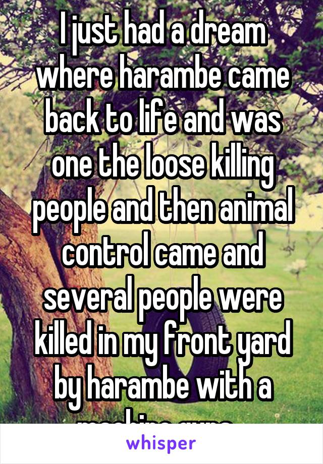 I just had a dream where harambe came back to life and was one the loose killing people and then animal control came and several people were killed in my front yard by harambe with a machine guns...