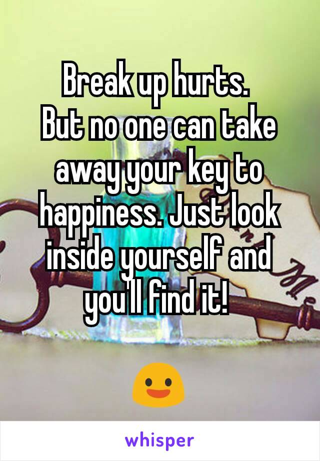 Break up hurts.  But no one can take away your key to happiness. Just look inside yourself and you'll find it!   😃