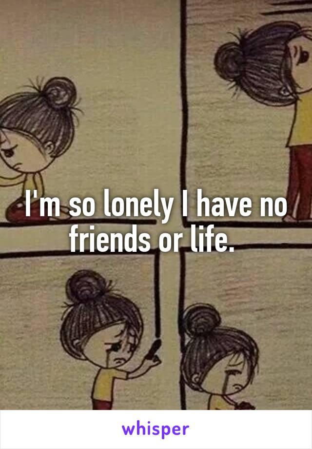 I'm so lonely I have no friends or life.