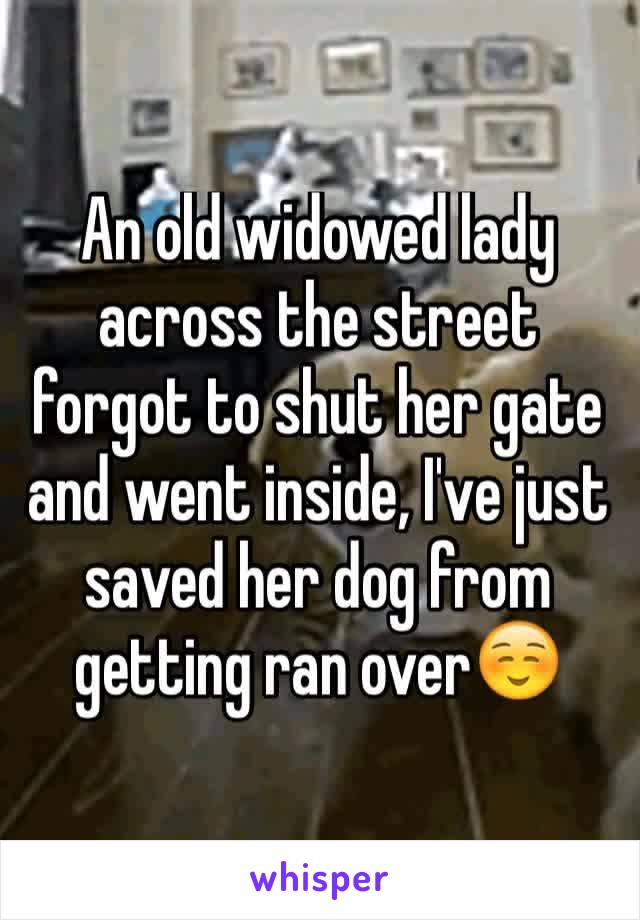 An old widowed lady across the street forgot to shut her gate and went inside, I've just saved her dog from getting ran over☺️
