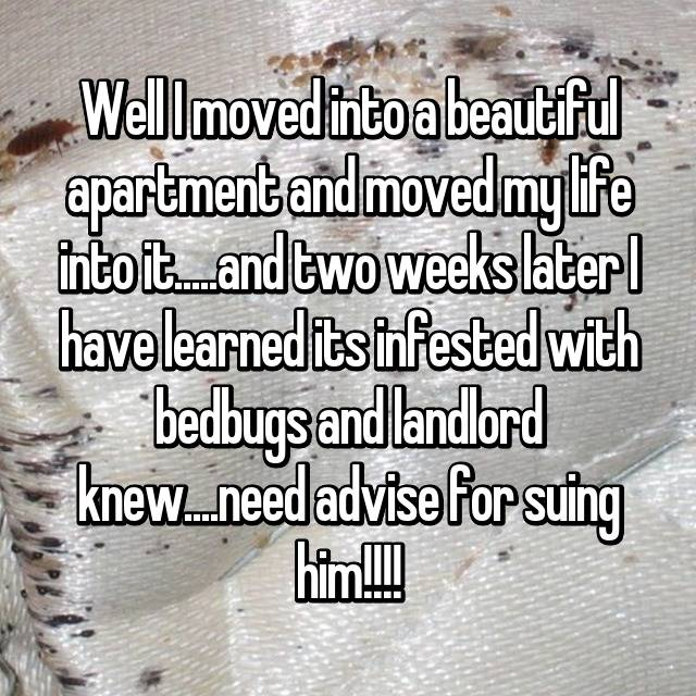 Well I moved into a beautiful apartment and moved my life into it.....and two weeks later I have learned its infested with bedbugs and landlord knew....need advise for suing him!!!!
