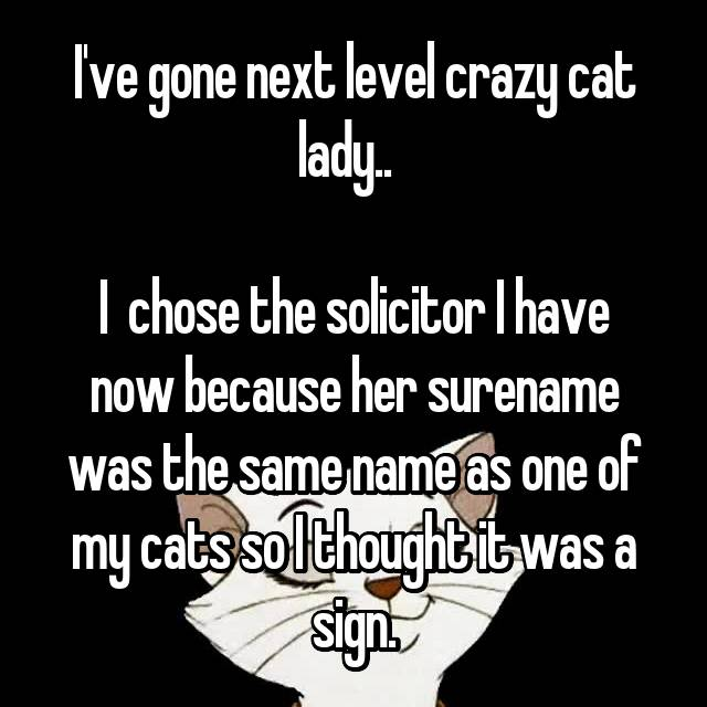 I've gone next level crazy cat lady..    I  chose the solicitor I have now because her surename was the same name as one of my cats so I thought it was a sign.