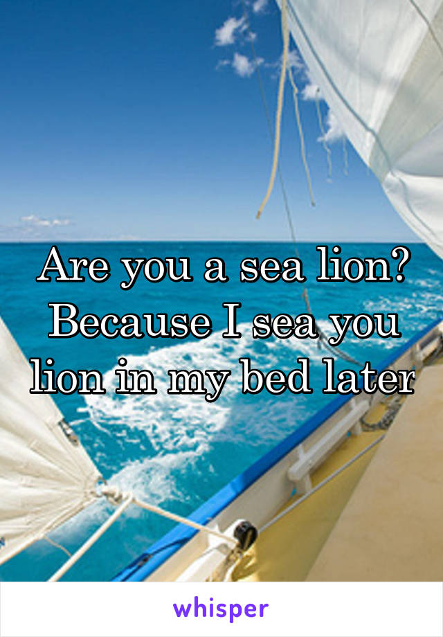 Are you a sea lion? Because I sea you lion in my bed later