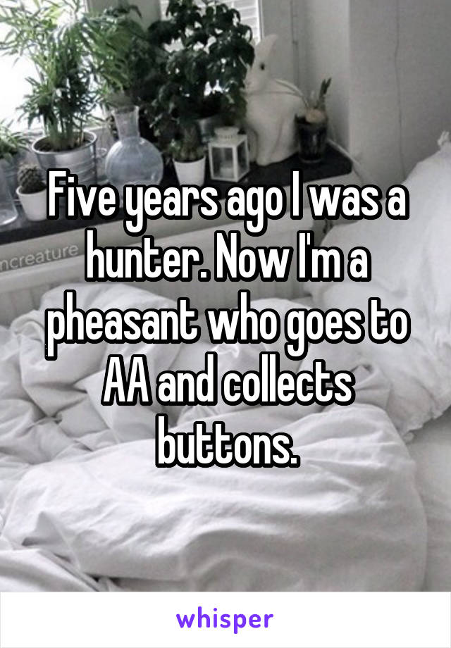 Five years ago I was a hunter. Now I'm a pheasant who goes to AA and collects buttons.