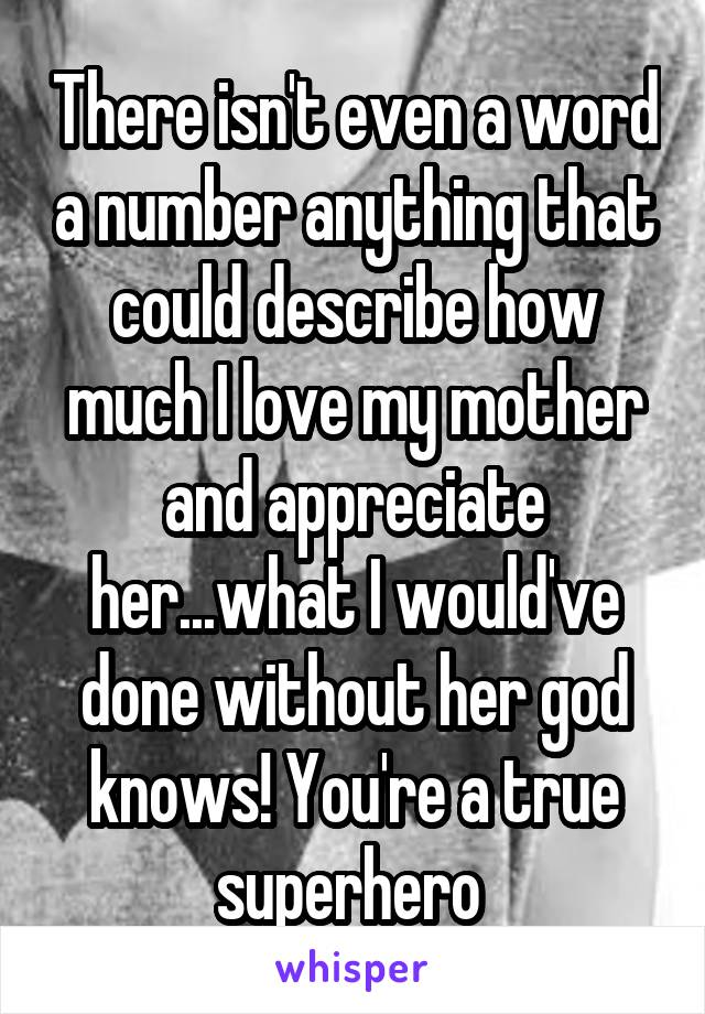There isn't even a word a number anything that could describe how much I love my mother and appreciate her...what I would've done without her god knows! You're a true superhero