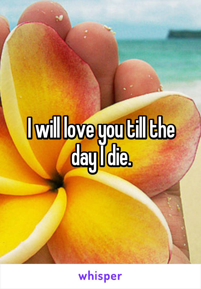 I will love you till the day I die.
