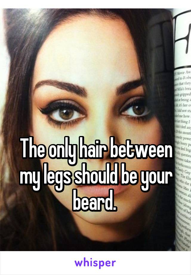 The only hair between my legs should be your beard.