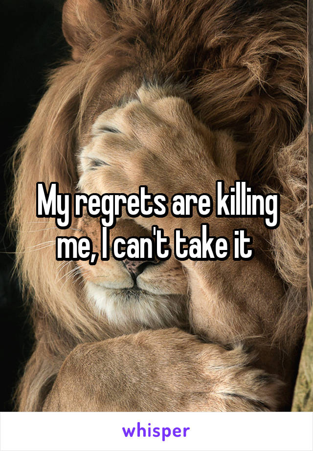 My regrets are killing me, I can't take it