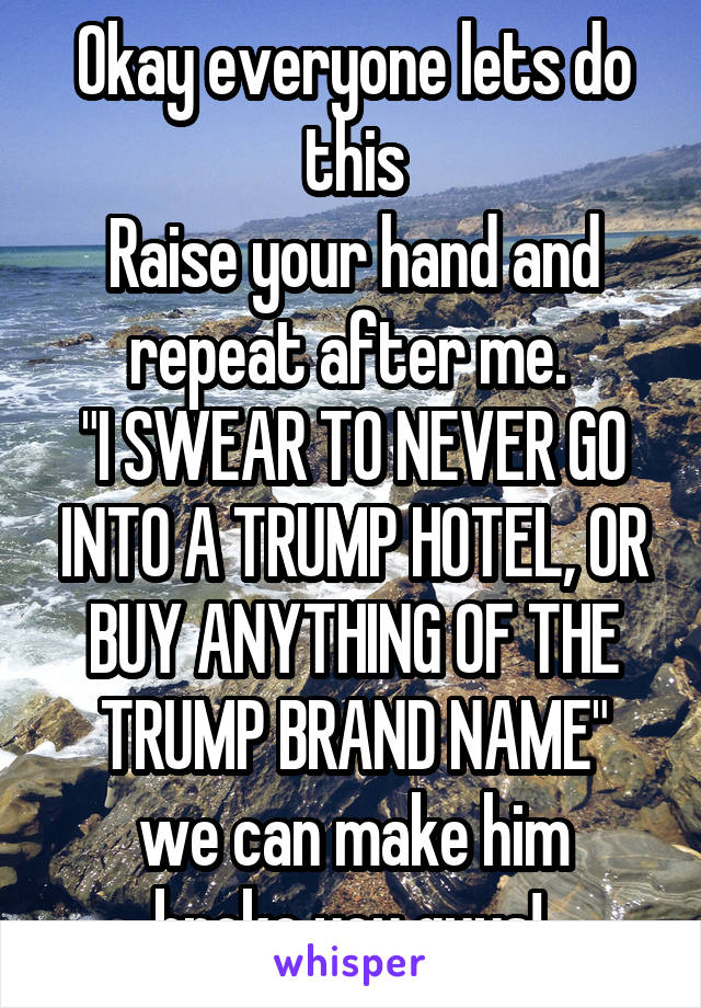 "Okay everyone lets do this Raise your hand and repeat after me.  ""I SWEAR TO NEVER GO INTO A TRUMP HOTEL, OR BUY ANYTHING OF THE TRUMP BRAND NAME"" we can make him broke you guys!"