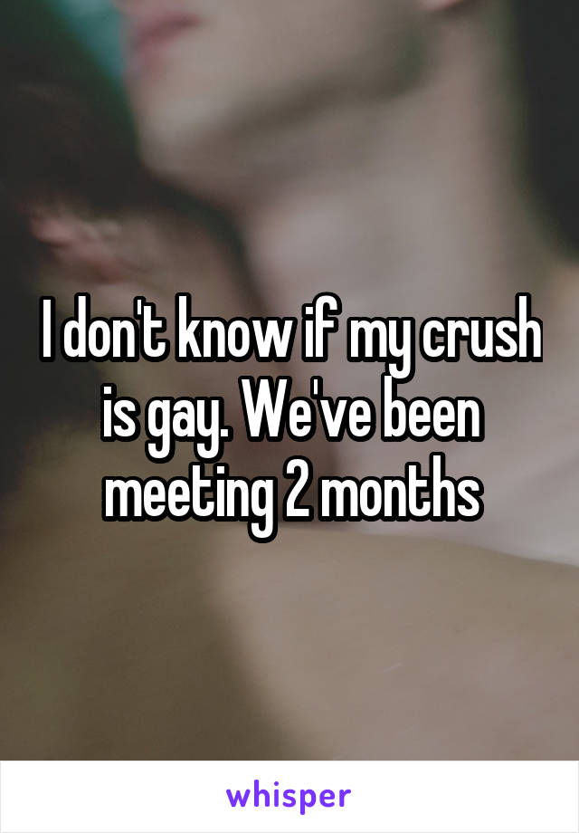I don't know if my crush is gay. We've been meeting 2 months