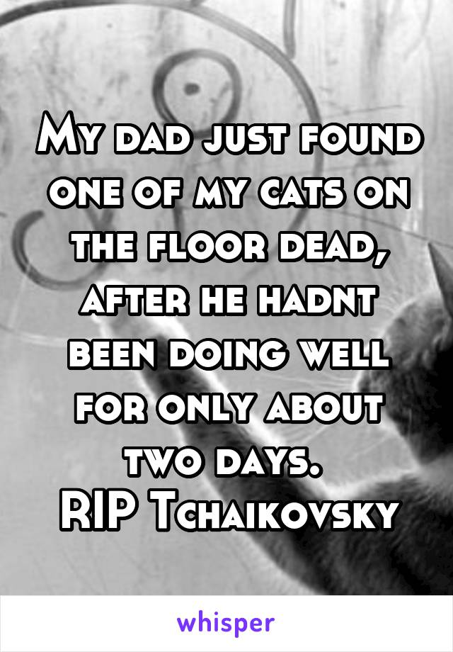 My dad just found one of my cats on the floor dead, after he hadnt been doing well for only about two days.  RIP Tchaikovsky