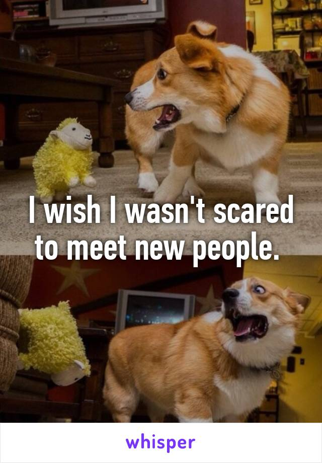 I wish I wasn't scared to meet new people.