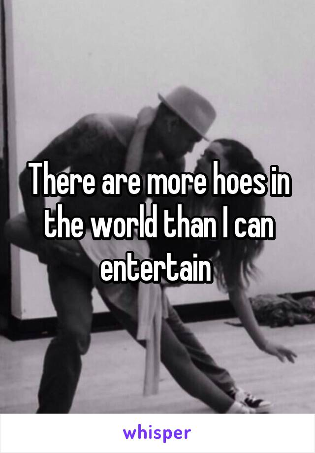 There are more hoes in the world than I can entertain